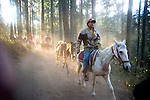 People on horseback at Monarch Butterfly Preserve near Moreilia