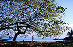 A kid enjoys the early morning near Coconut Island about Hilo on the Big Island, Hawaii.