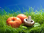 Organic Ontario field tomatoes, cremini mushrooms and cucumbers in green grass under blue sky artistic food still life