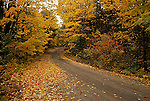 Winding country road, rural Ontario