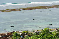 Seaweed farms in the shallow water between the reef and beach, Kutuh, Bali, Indonesia.