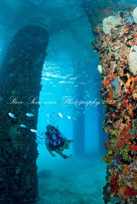 Diving uns Virgin Islands