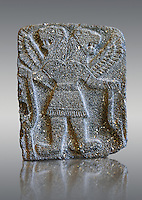 9th century BC stone Neo-Hittite/ Aramaean Orthostats from Palace Temple of the Aramaean city of Tell Halaf in northeastern Syria close to the Turkish border. The Orthostats are in a Neo Hittite style and depict mythical animals and figures that have magical properties. Pergamon Museum, Berlin . Museum Inv No VAS 8841,