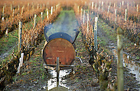 A home made wheel barrow between the rows of vines made from an oil barrel and used to burn the branches and twigs when pruning in winter. in Vouvray, Le Haut Lieu, Domaine Huet, Indre et Loire France