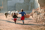 Two youngsters, one carrying a large basket, follow their flock of sheep through a rural lane.  The Uyghurs are an Turkic ethnic group in Central Asia, particularly China.