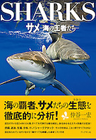 Sharks, June 2011, book cover use, Japan, Image ID: Oceanic-Whitetip-Shark-0067