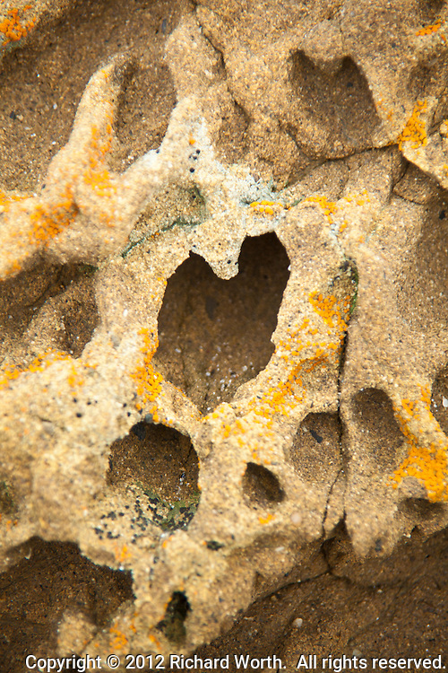 A Valentine heart-shaped tafoni formation at Bean Hollow State Beach on the California coast.