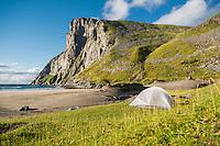 Tent camping at Kvalvika beach, Moskenesøy, Lofoten Islands, Norway