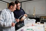 Stanford bioengineering lab