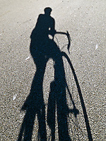 the shadow of a bicycle and rider on a paved road.