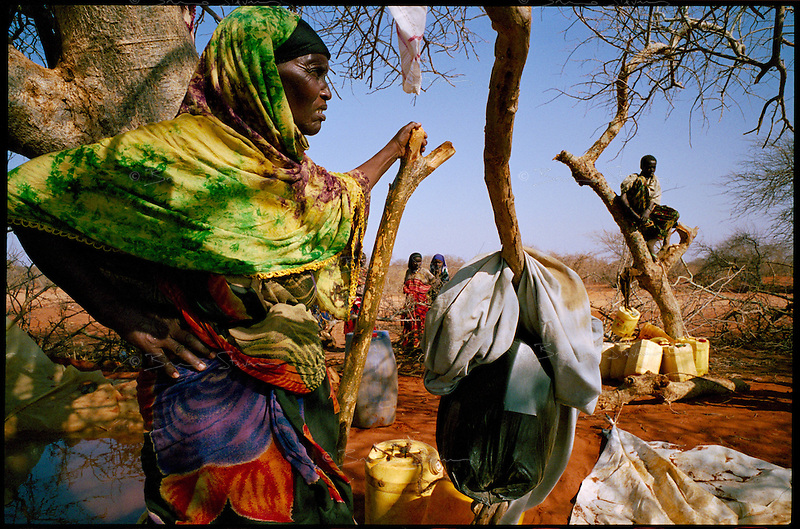 near El Ram, NE Kenya, March 2006.Hundreds of people from the bush come to fetch water in a makeshift temporary cistern, filled twice a week by a private tanker truck. More than 4 millions people are affected in the region by the worst drought in man's memory. The livestock is decimated and a whole lifestyle threatened.
