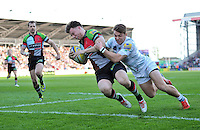Harlequins v London Irish