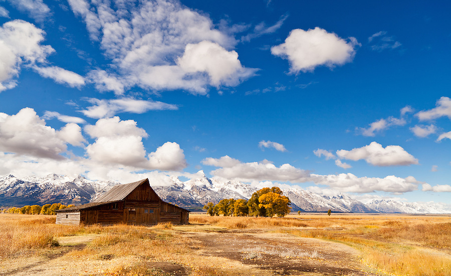 Cumulus clouds sail above the Mormon Row barns in Grand Teton National park in the fall.