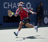 David Ferrer..Tennis - US Open - Grand Slam -  New York 2012 -  Flushing Meadows - New York - USA - Saturday 9th September  2012. .© AMN Images, 30, Cleveland Street, London, W1T 4JD.Tel - +44 20 7907 6387.mfrey@advantagemedianet.com.www.amnimages.photoshelter.com.www.advantagemedianet.com.www.tennishead.net