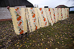 Yulia Nikolayenko, 79, pulls down dry linens outside her home in Dublin, near the Chernobyl radiation zone, on Oct. 24, 1009.