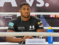 GERMANY: Anthony Joshua pose during the press conference to Anthony Joshua vs. Wladimir Klitschko at RTL media group mall on February 16, 2017 in Cologne, Germany.<br />