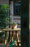 Potted red Geraniums on a wooden table glimpsed through an Indian painted door