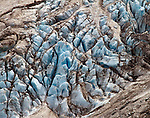 A small portion of Glacier Piedras Blancas, a hanging glacier near the town of El Chalten in Parque Nacional los Glaciares (Norte), Argentina.