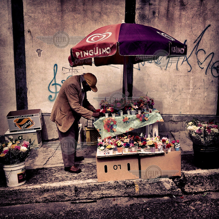 Jose Lema, 75, sells plastic flowers outside the cemetery of Tumbaco on Dia de los Muertos (The Day of the Dead).