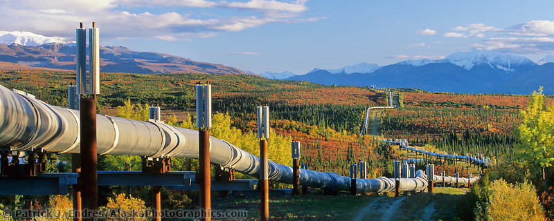 The Trans Alaska oil pipeline stretches across the autumn tundra through the Alaska mountain range, interior, Alaska