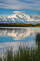 Mt McKinley, locally called Denali, and reflection pond, at the west end of Denali National Park, interior, Alaska.Denali National Park, interior, Alaska.