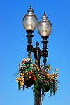 Lights & Flowers, Balboa, CA