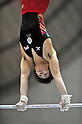Ryohei Kato (JPN),.APRIL 8, 2012 - Artistic gymnastics : The 66nd All Japan Gymnastics Championship Individual All-Around , Men's Individual 2nd day at 1st Yoyogi Gymnasium, Tokyo, Japan. (Photo by Jun Tsukida/AFLO SPORT) [0003].