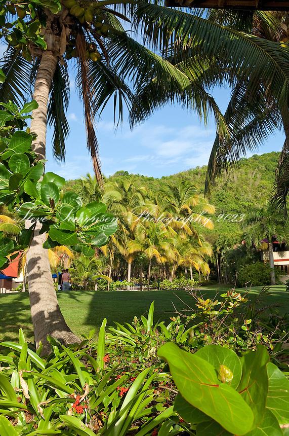 Carambola Beach Resort<br /> St. Croix<br /> U.S. Virgin Islands