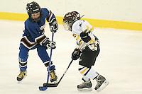 Badger State Winter Games '08 - Mites Hockey - Everest vs Depere