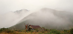 Old abandoned hut in the Matiri Valley. Tasman Region. New Zealand.