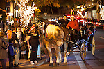 Visitors line up for a ride on horse-drawn carriage on State Street.
