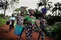 Women from the village Amdalei near Lunsar, Sierra Leone on their way to the rice fields in the morning. They keep working until the first labour pains start.