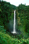 Hawaii: Hilo.  At Akaka Falls.  Photo #: hihilo105..Photo copyright Lee Foster, 510/540-2202, lee@fostertravel.com, www.fostertravel.com