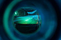 """Beauty at the Bottom: Tequila 21"" - This is a photograph of a tequila bottle, shot right down inside the mouth of the bottle."