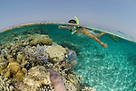 Rowley Shoals - Western Australia