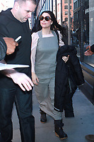MAR 20 Amy Lee Seen In New York City