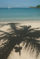 Shadow of palm tree on sandy beach