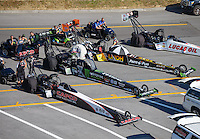 Jun 17, 2016; Bristol, TN, USA; The cars (from near to far) of NHRA top fuel driver Steve Torrence , Brittany Force , Clay Millican and Richie Crampton in the staging lanes during qualifying for the Thunder Valley Nationals at Bristol Dragway. Mandatory Credit: Mark J. Rebilas-USA TODAY Sports