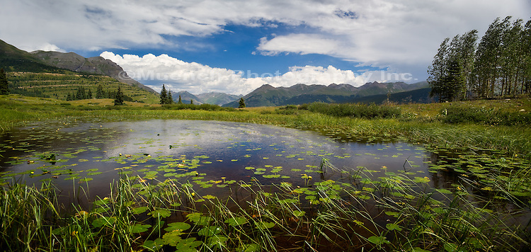 Pond with Lilly pads in Molas Divide, Rocky Mountains
