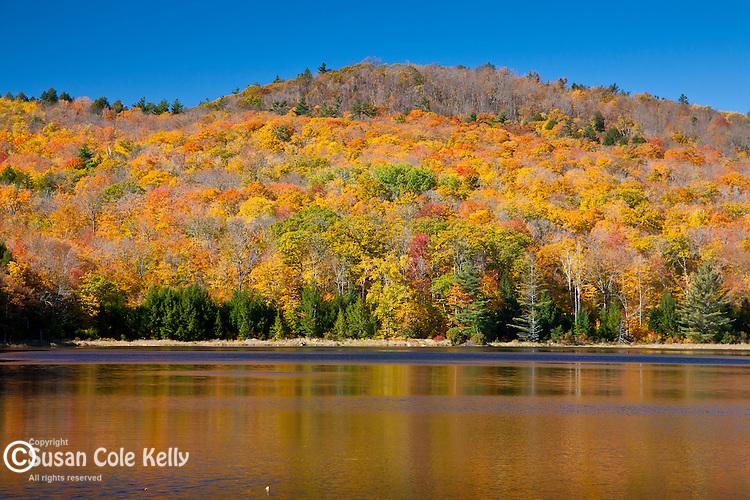 Peak foliage on Stoughton Pond in Perkinsville, VT, USA