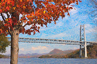A Maple tree in Autumn color on the shore of the Hudson River, with the Bear Mountain Bridge in the background, Stony Point, New York.   The image was creatively modified to resemble a painting.