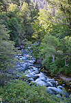 Idaho, North Central, Riggins, Nez Perce National Forest. Slate Creek in summer.