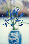 A blue Chinese vase with blue flowers in it