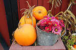 Autumn and Halloween Images