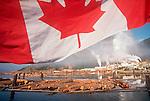 Travel British Columbia - Canada