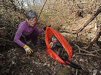 NWA Democrat-Gazette/ANDY SHUPE<br /> Carrie Trinka of Fayetteville picks up trash Saturday, Feb. 11, 2017, while volunteering with the Beaver Watershed Alliance to help clean up Spout Spring Branch, a neighborhood stream that flows to Town Branch and eventually reaches Beaver Lake. The alliance will next host a cleanup along Richland Creek in Goshen at 9 a.m. Saturday.