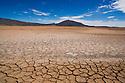 Bolivia, Altiplano, mud crack patterns in dry lagoon