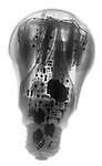 X-ray image of an LED lightbulb (black on white) by Jim Wehtje, specialist in x-ray art and design images.