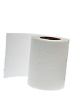 Roll of Toilet Paper - 2011