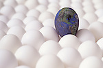 Row after row of white eggs with one egg painted with the world burnt and being destroyed by pollution North American Continent